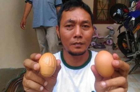 Telur Bertuliskan Allah dan Tidak Akan Dijual